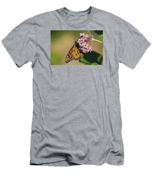 Monarch On Milkweed Men's T-Shirt (Slim Fit) by Shelly Gunderson