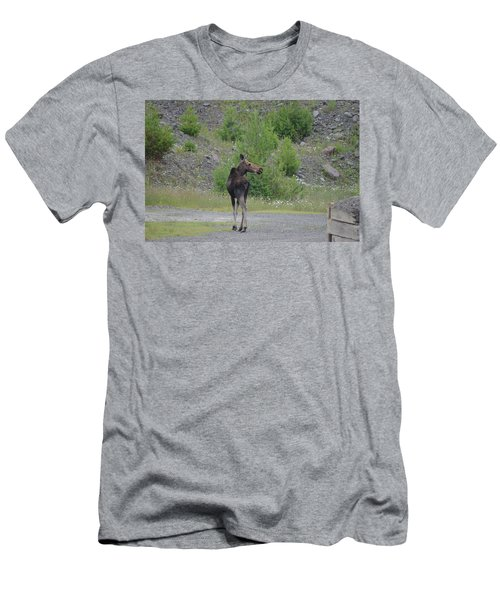 Moose Men's T-Shirt (Athletic Fit)