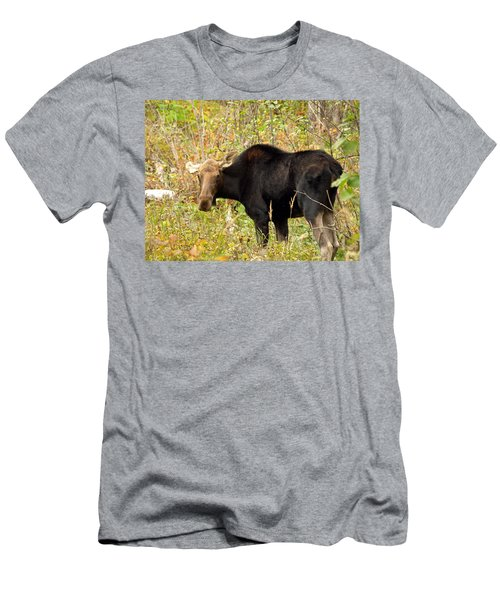 Men's T-Shirt (Slim Fit) featuring the photograph Moose by James Peterson