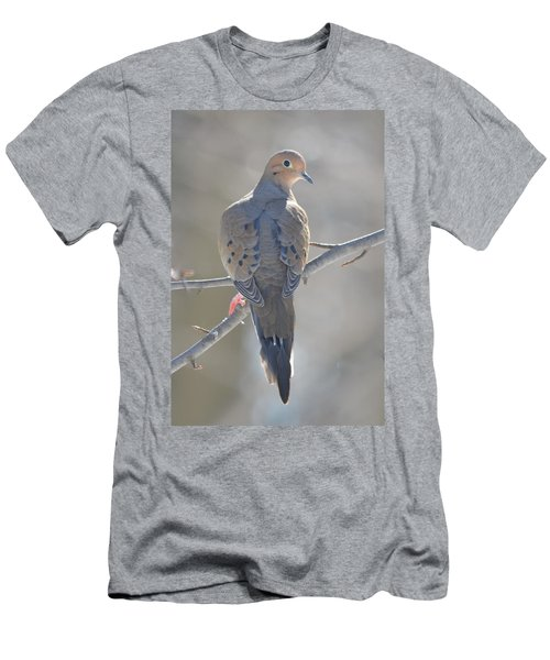Mourning Dove Men's T-Shirt (Slim Fit) by Richard Bryce and Family