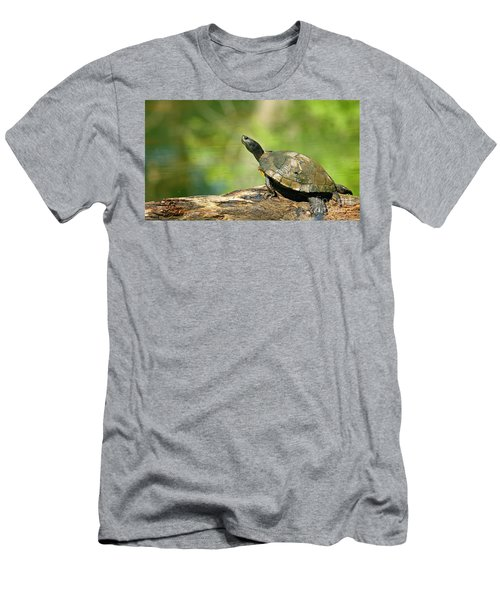 Mossy Turtle Men's T-Shirt (Athletic Fit)