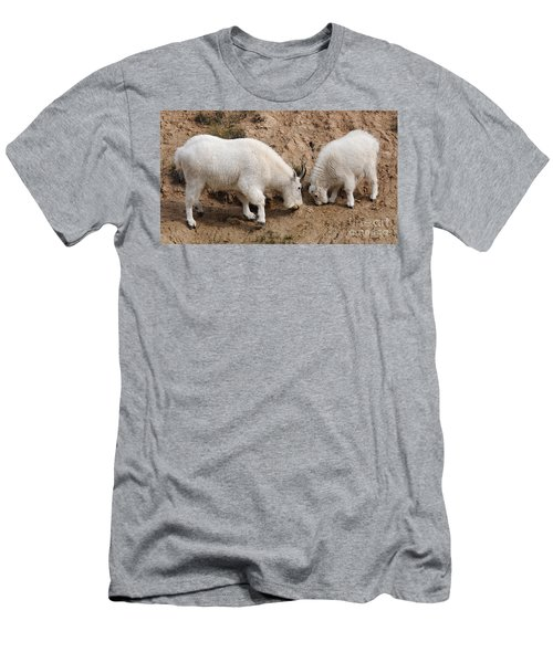 Mountain Goats At The Salt Lick Men's T-Shirt (Slim Fit) by Vivian Christopher