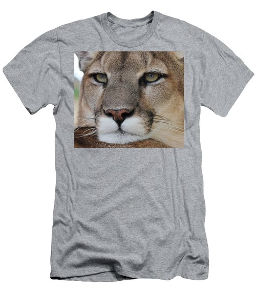 Mountain Lion Portrait 2 Men's T-Shirt (Athletic Fit)