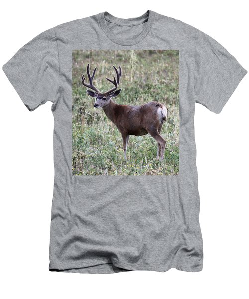 Muley Buck Men's T-Shirt (Athletic Fit)