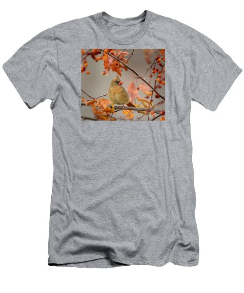 Fall Colors Men's T-Shirt (Slim Fit) by Nava Thompson