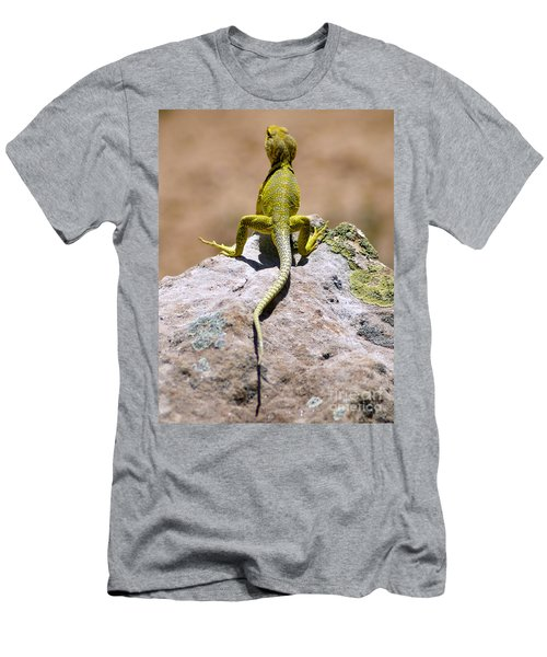 New Photographic Art Print For Sale Lizard Back Ghost Ranch New Mexico Men's T-Shirt (Athletic Fit)