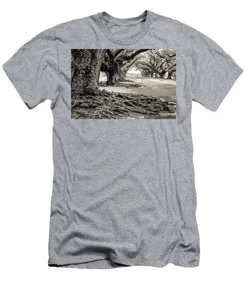 Oak Alley Men's T-Shirt (Athletic Fit)