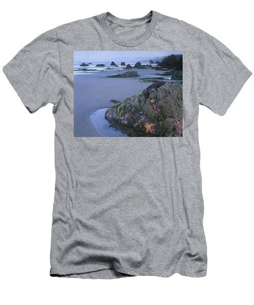 Miwok T Shirts Fine Art America