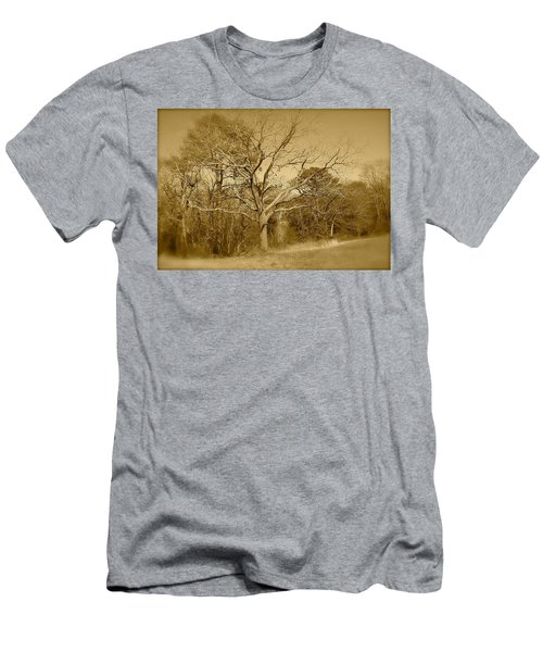 Old Haunted Tree In Sepia Men's T-Shirt (Athletic Fit)