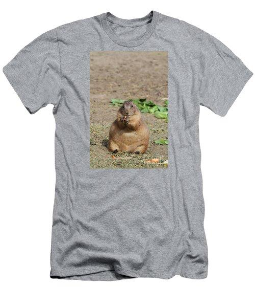 Om Nom Nom Nom Nom Men's T-Shirt (Athletic Fit)