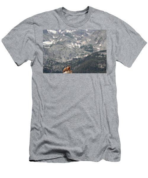 On Top Of The World Men's T-Shirt (Athletic Fit)
