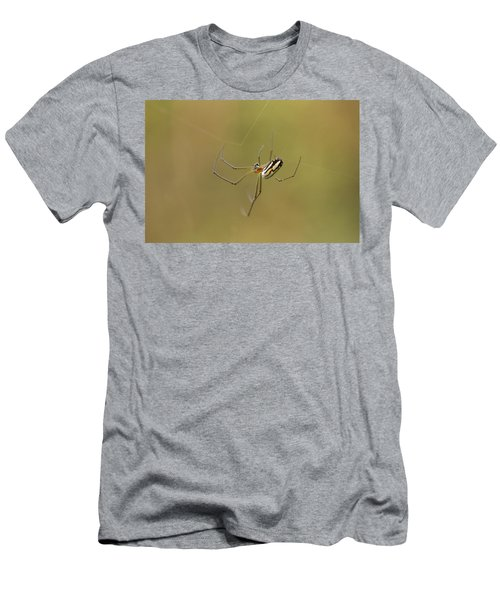 Men's T-Shirt (Slim Fit) featuring the photograph Orchard Spider by Greg Allore