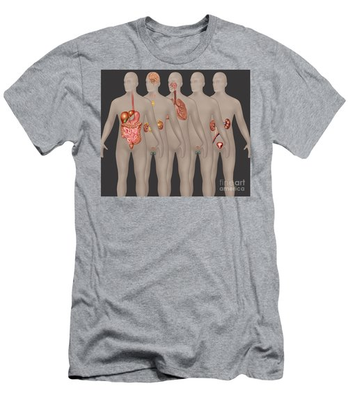 Organ Systems In Male Anatomy Men's T-Shirt (Athletic Fit)