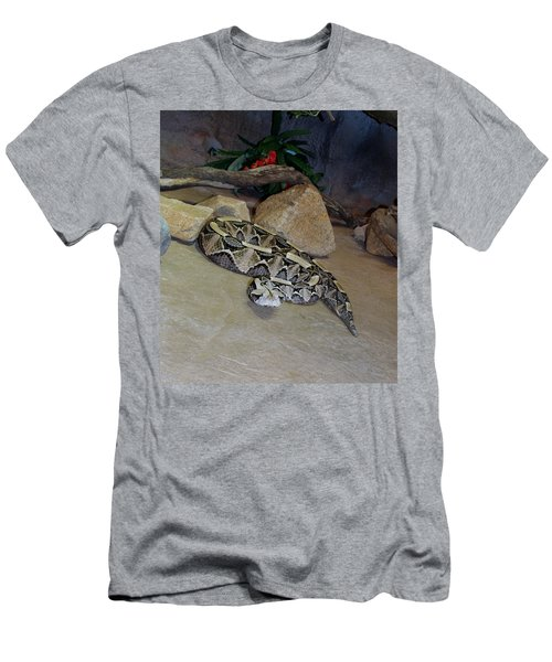 Out Of Africa Viper 2 Men's T-Shirt (Athletic Fit)