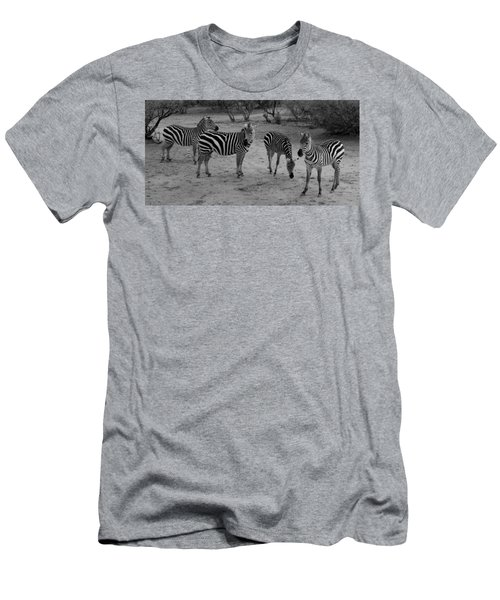 Out Of Africa  Zebras Men's T-Shirt (Athletic Fit)