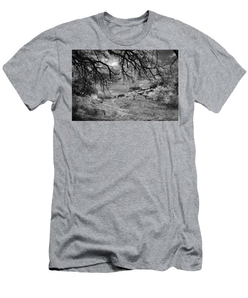 Overhanging Branches Men's T-Shirt (Athletic Fit)