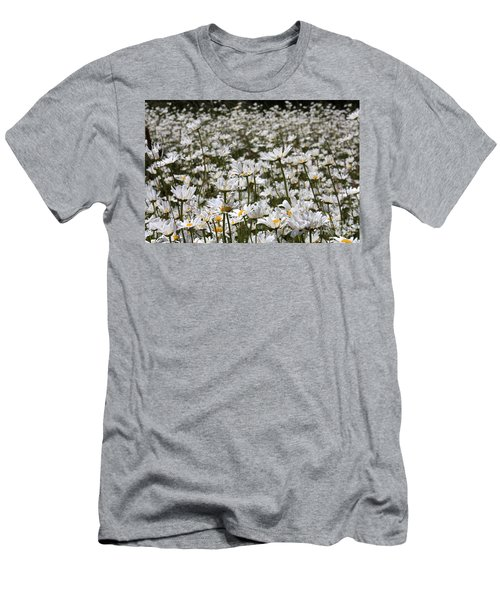 Ox Eye Daisies Men's T-Shirt (Athletic Fit)