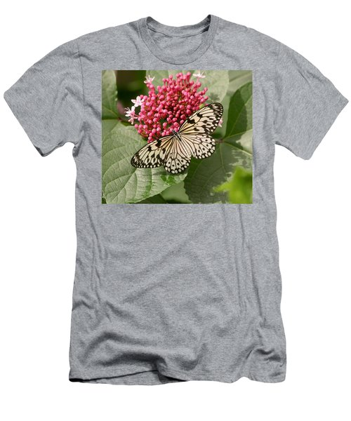 Paper Kite Butterfly Men's T-Shirt (Athletic Fit)