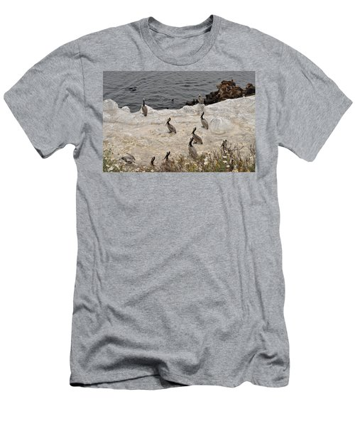 Pelicans Seals N Daisies  Men's T-Shirt (Athletic Fit)