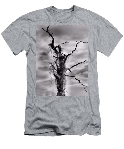 Petrified Tree Men's T-Shirt (Athletic Fit)