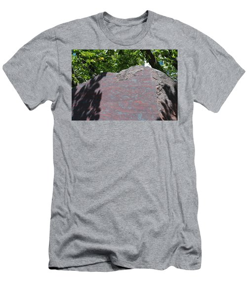 Petrified Wood On Display Men's T-Shirt (Athletic Fit)