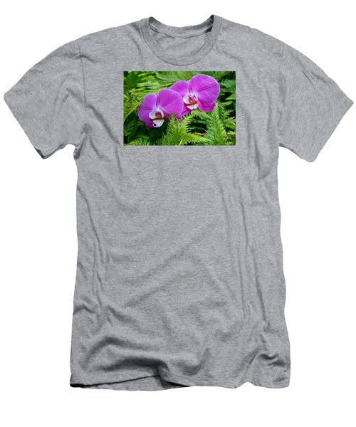 Phalaenopsis Moth Orchids Men's T-Shirt (Slim Fit) by Venetia Featherstone-Witty