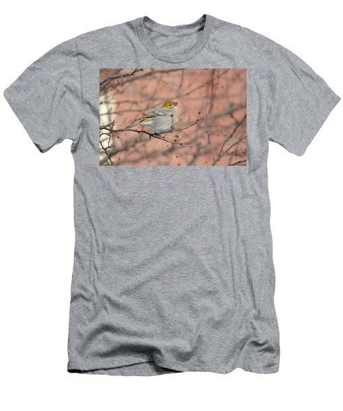 Men's T-Shirt (Slim Fit) featuring the photograph Pine Grosbeak by James Petersen