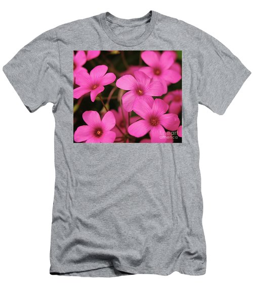 Pretty Pink Phlox Men's T-Shirt (Athletic Fit)
