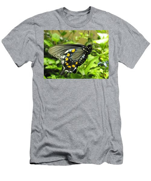 Pipevine Swallowtail Men's T-Shirt (Slim Fit) by Jennifer Wheatley Wolf