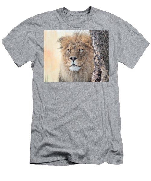 Portrait Of A Lion Men's T-Shirt (Athletic Fit)