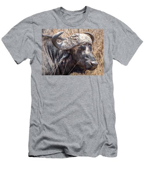 Portrait Of An African Buffalo Men's T-Shirt (Athletic Fit)