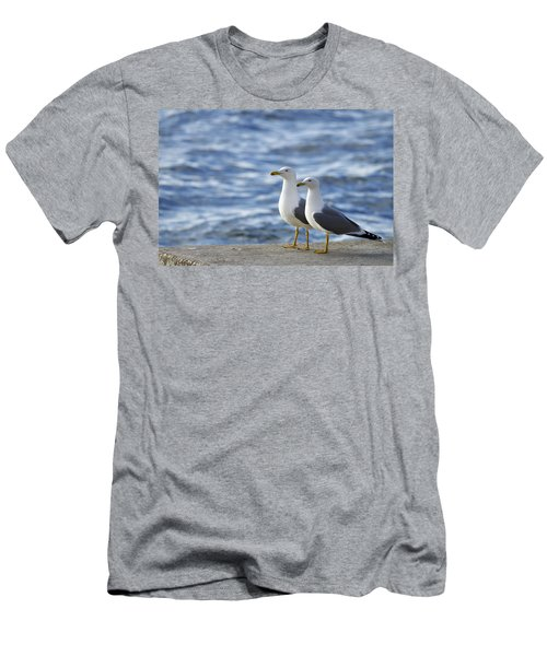 Posing Seagulls Men's T-Shirt (Athletic Fit)
