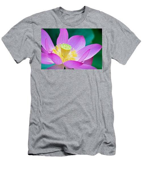 Purple Lotus Blossom Men's T-Shirt (Athletic Fit)