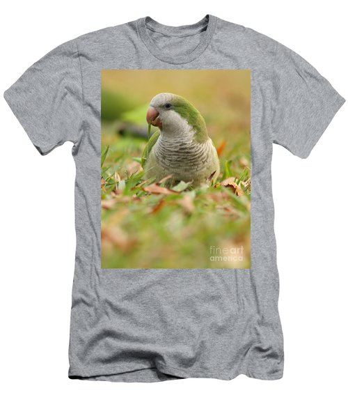 Quaker Parrot #3 Men's T-Shirt (Athletic Fit)