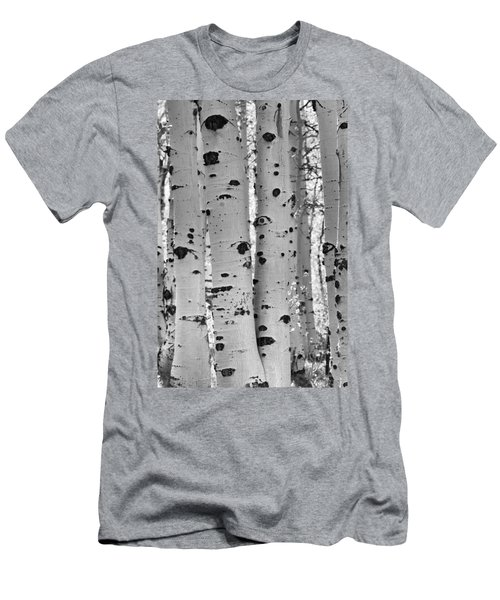Quaking Aspen Zion National Park Men's T-Shirt (Slim Fit)