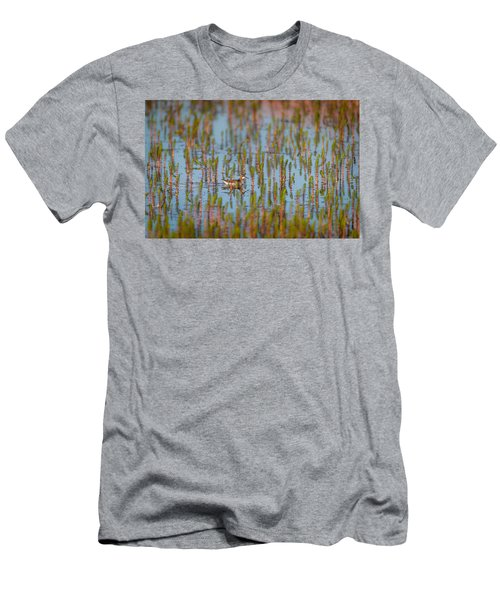 Red-necked Phalarope Phalaropus Men's T-Shirt (Athletic Fit)