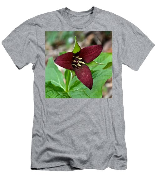 Red Trillium Men's T-Shirt (Athletic Fit)