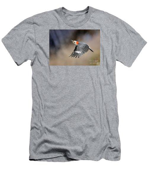 Redbelly Woodpecker Flight Men's T-Shirt (Athletic Fit)