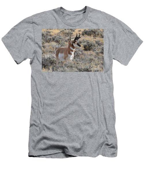 Regal Patriarch Men's T-Shirt (Athletic Fit)