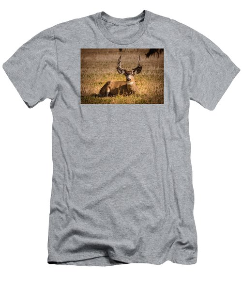 Men's T-Shirt (Slim Fit) featuring the photograph Relaxing Buck by Janis Knight