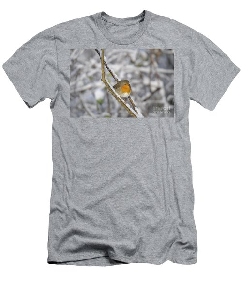 Robin At Winter Men's T-Shirt (Athletic Fit)