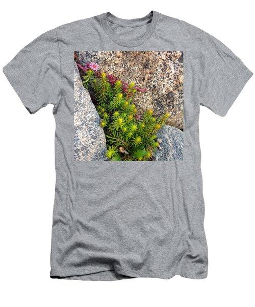 Men's T-Shirt (Slim Fit) featuring the photograph Rock Flower by Meghan at FireBonnet Art