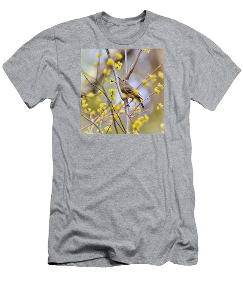 Men's T-Shirt (Slim Fit) featuring the photograph Ruby-crowned Kinglet by Kerri Farley