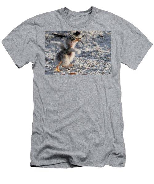 Running Free - Least Tern Men's T-Shirt (Slim Fit) by Meg Rousher