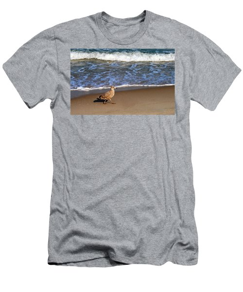 Sandpiper At Ortley Beach, Nj Men's T-Shirt (Athletic Fit)