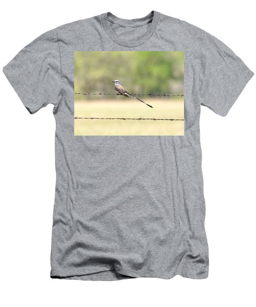 Scissor-tailed Flycatcher Men's T-Shirt (Athletic Fit)