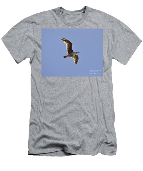 Seagull N Light  Men's T-Shirt (Athletic Fit)