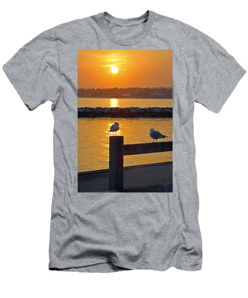 Seaguls At Sunset Men's T-Shirt (Athletic Fit)