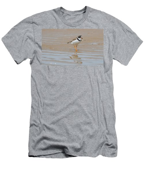 Semipalmated Plover Men's T-Shirt (Athletic Fit)