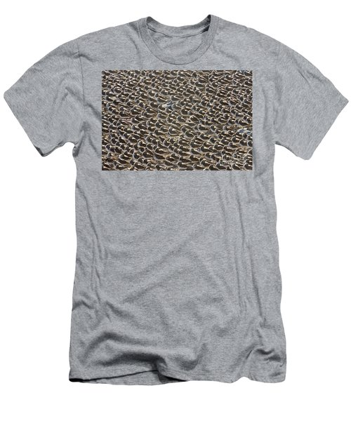 Semipalmated Sandpipers Sleeping Men's T-Shirt (Athletic Fit)